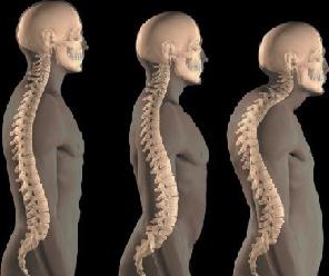 Phoenix Chiropractic